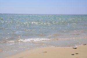 Fundstücke Strand