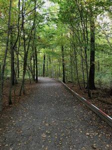 https://milchundwein.de/wp-content/uploads/2019/05/Walderlebniszentrum-Gramschatzer-Wald-Sinneswandeln.jpg